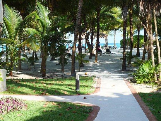 Grand Palladium Kantenah Resort and Spa: Strand