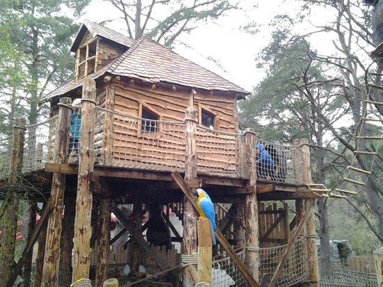 Landmark Forest Adventure Park: lost explorers hut