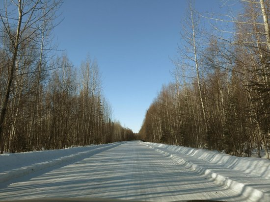 Meandering Moose Lodging: Road to Talkeetna in Mar 2014