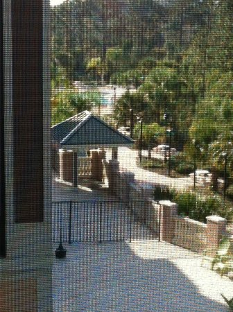Palisades Resort: view 2 from balcony