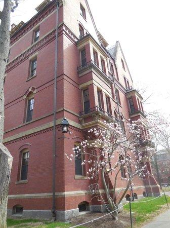 Russell House Tavern: Harvard