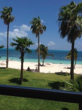 Hotel Riu Palace Peninsula: From buffet seating