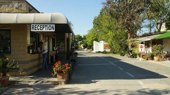 Camping Village Torre Pendente : réception