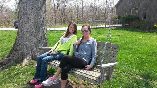 Sleepy Creek Vineyards: Swinging outside at Sleepy Creek!