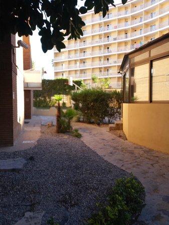 Apartamentos Levante Club: Hotel