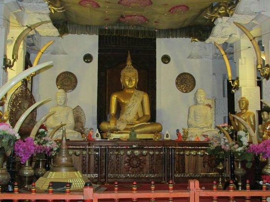 Temple de la Dent : Golden sculpture and elephant tusks