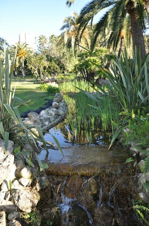 Don Carlos Leisure Resort & Spa: парк отеля