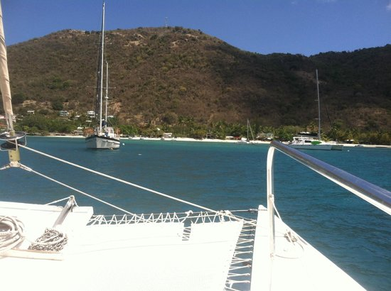 Calypso Charters Bad Kitty: Calypso Charters