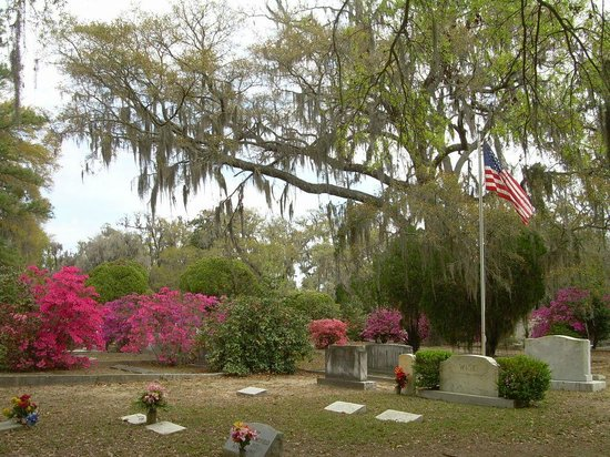 Bonaventure Cemetery: Contrast