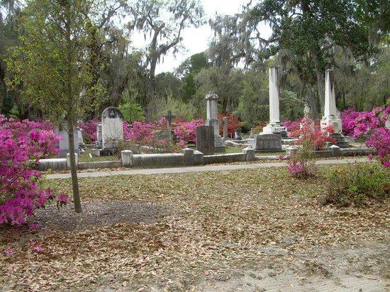 Bonaventure Cemetery: Overview