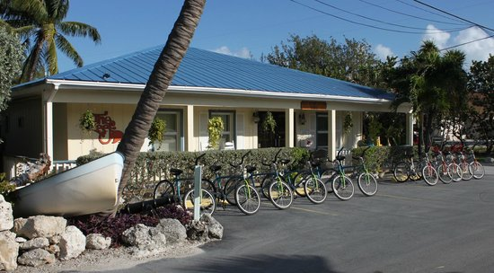 Reef Resort: Main Entrance with bikes for guests