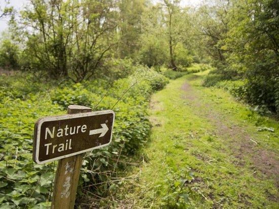 sevenoaks-wildlife-reserve.jpg
