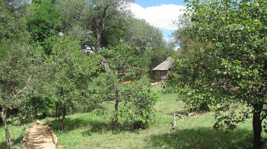 Umlani Bushcamp: Grounds