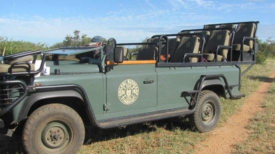 Umlani Bushcamp: Jeep
