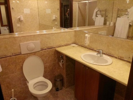 SunFlower Park Hotel : Bathroom