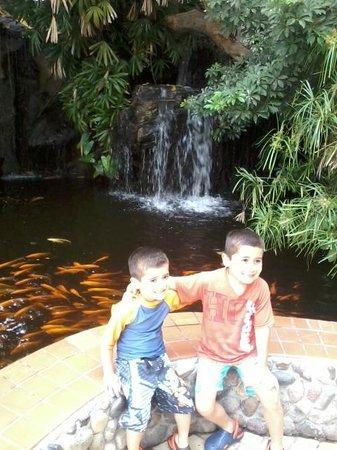 Hotel Playa Mazatlan: good !! tnx 4 all
