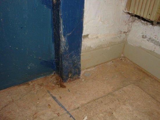 El Mouradi Djerba Menzel : Mur de chambre