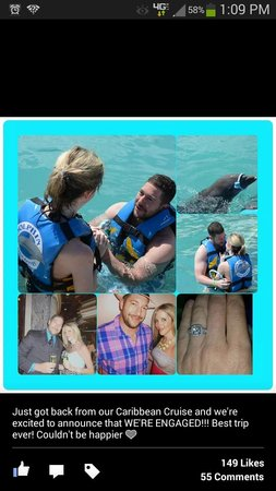Dolphin Discovery Grand Cayman: Dolphin Bringing Ring to Propose