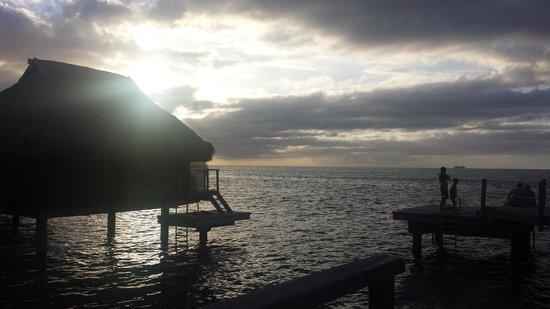 Manava Beach Resort & Spa - Moorea: just amazing