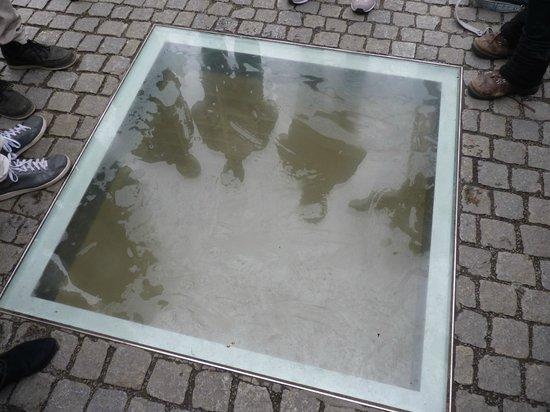SANDEMANs NEW Europe - Berlin: Memorial sobre la Quema de Libros en Bebelplatz