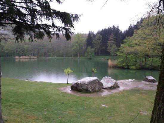 Lago pontini foto di ristorante lago dei pontini bagno di romagna tripadvisor - Ristorante del lago bagno di romagna ...