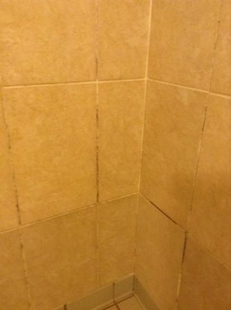 Oriel Country Hotel & Spa: changing room tiles