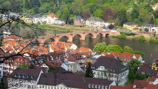 Schloss Heidelberg: Vista desde el castillo
