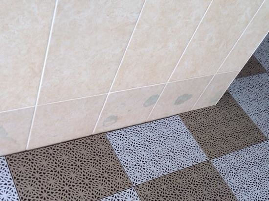Oriel Country Hotel & Spa: Bodge Job on tiles