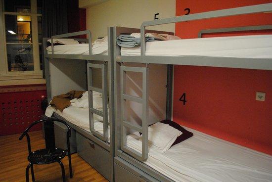 White Tulip Hostel : 10 bed room