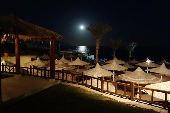 Hilton Sharks Bay Resort : Ночной вид