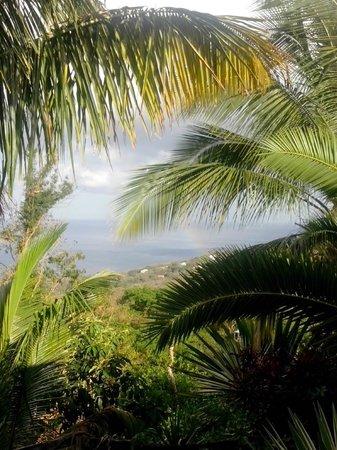 Villa Rose Caraibes : Aperçu de la vue à partir de la terrasse de Gwada