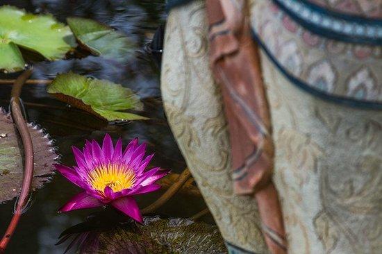 P.P. Erawan Palms Resort: Jardim