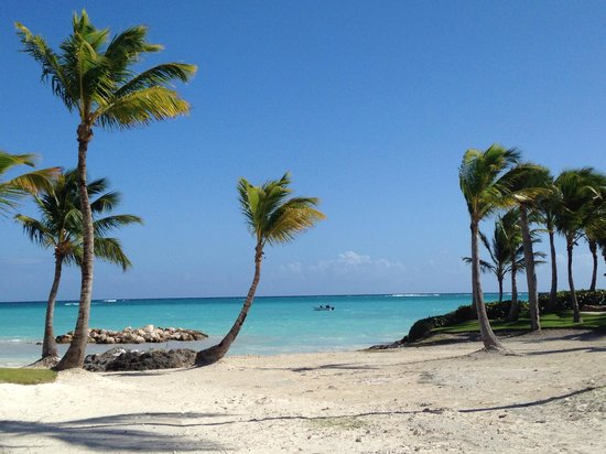 Sanctuary Cap Cana by Playa Hotels & Resorts: Paradise