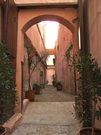 Riad Lotus Privilège : Alleyway off the street leading to Riad