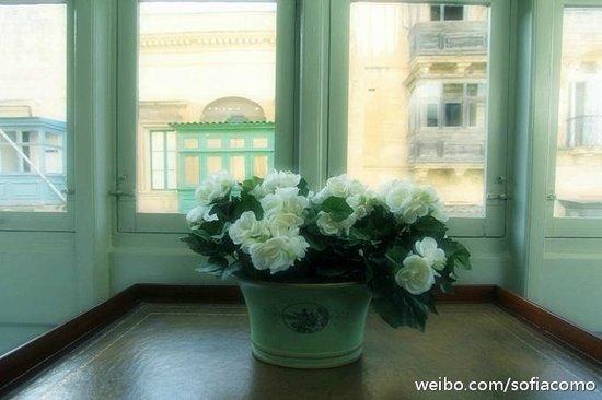 Palazzo Prince D'Orange Luxury Suites: window facing the street