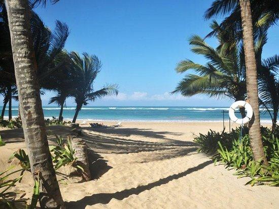 Sivory Punta Cana Boutique Hotel : The Beach as Sivory