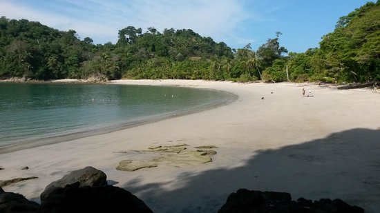 Hotel Costa Verde: Manuel Antonia Nat Park Beach
