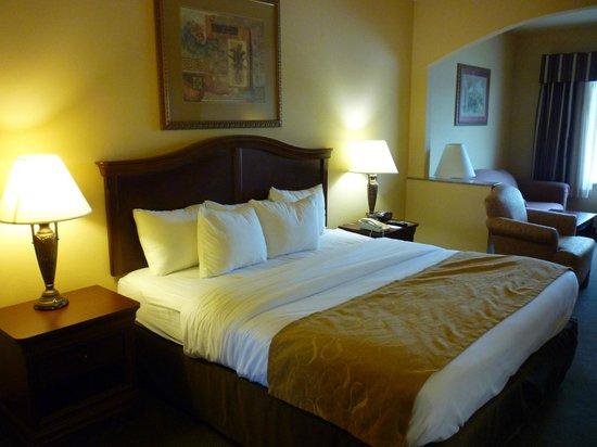 Comfort Suites: Comfy bed