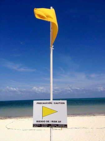 Moon Palace Cancun: Beach? not so good