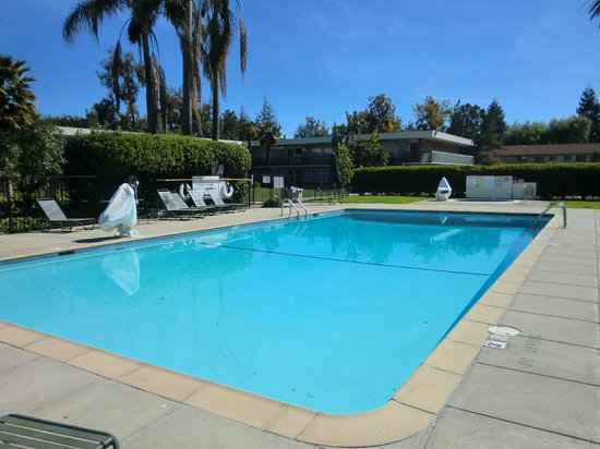 Ramada Sunnyvale/Silicon Valley: View of pool