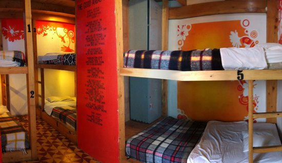 Jungle Party Hostal Club & Restaurant: Our Deluxe Dorms have reading lights
