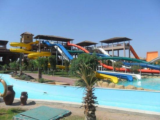 Jungle Aqua Park : Waterpark View