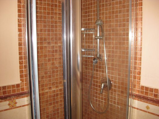 Michelangelo Hotel: yes this really is a shower....