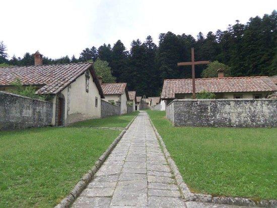 Guida Turistica Arezzo-Cortona - Silvia Vecchini: Camaldoli