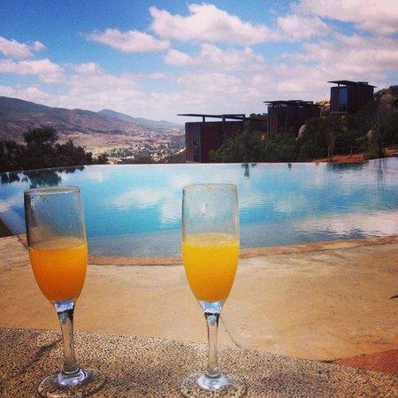 Encuentro Guadalupe : mimosas en el jacuzzi