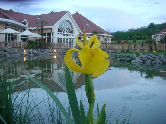 Les Jardins de Beauval : promenade aux abords de l'hôtel 2