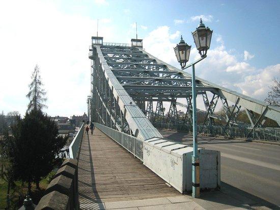 Loschwitzer Brücke (Blaues Wunder): Striking view