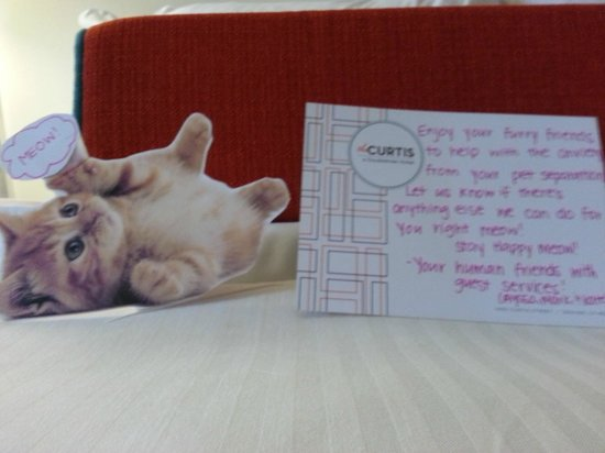 The Curtis Denver - a DoubleTree by Hilton Hotel: Kate's kittie