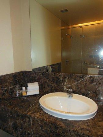 The Gateway Hotel Ganges Varanasi : The brown marble vanity area in the bathroom