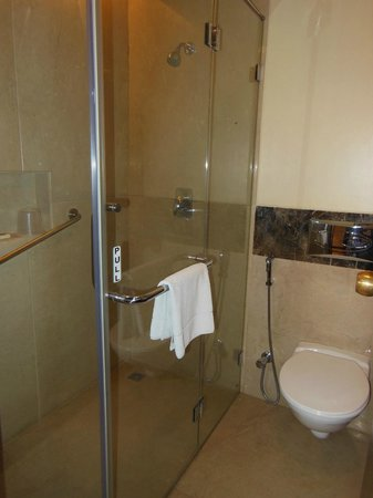 The Gateway Hotel Ganges Varanasi: A full shower enclosure is a treat in any hotel